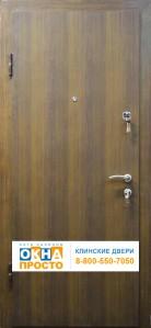 Двери с напылением «под дерево»